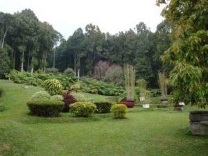 Botanishe tuinen Budugul Bali